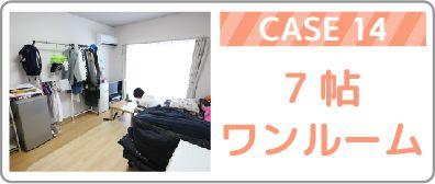 Case14